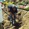 irrigation -09sh3