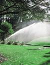 irrigation -rain-RotorsBeauty94